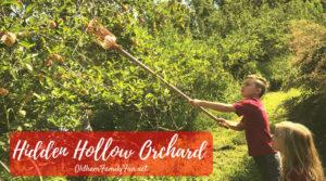 Hidden hollow orchard